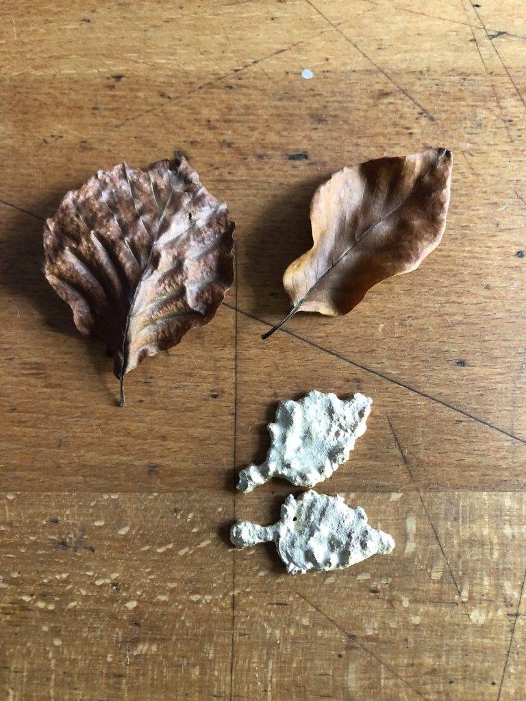 geschmolzene Blätter