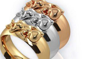 Ring in unterschiedlichen Farben